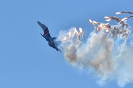 アラビノで撮影されたアラビノの航空機写真