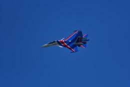 しゅん83さんが、アラビノで撮影したスホーイ・カンパニー Su-30SMの航空フォト(飛行機 写真・画像)