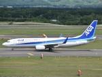 とびたさんが、新千歳空港で撮影した全日空 737-881の航空フォト(写真)
