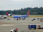 kiyohsさんが、シアトル タコマ国際空港で撮影したサンカントリー・エアラインズ 737-8Q8の航空フォト(飛行機 写真・画像)