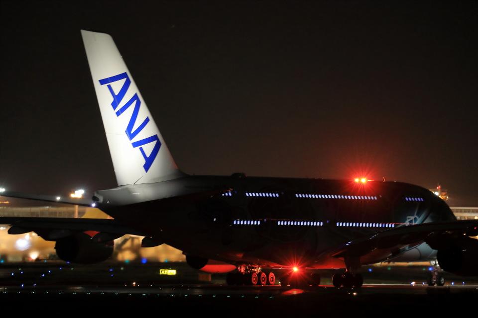 take_2014さんの全日空 Airbus A380 (JA382A) 航空フォト