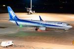 Ariesさんが、羽田空港で撮影した全日空 737-881の航空フォト(写真)