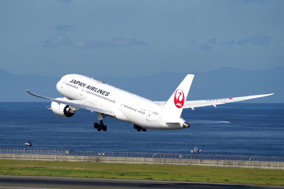 yabyanさんの日本航空 Boeing 787-8 Dreamliner (JA842J) 航空フォト