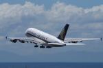 yabyanさんが、中部国際空港で撮影したシンガポール航空 A380-841の航空フォト(写真)