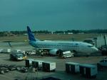 kiyohsさんが、シンガポール・チャンギ国際空港で撮影したガルーダ・インドネシア航空 737-8U3の航空フォト(写真)