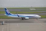OS52さんが、羽田空港で撮影した全日空 737-881の航空フォト(写真)