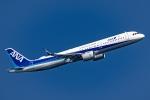 Ariesさんが、羽田空港で撮影した全日空 A321-272Nの航空フォト(写真)