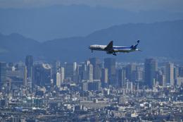 しゅあさんが、伊丹空港で撮影した全日空 777-281/ERの航空フォト(写真)