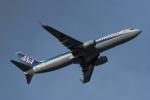 ぎんじろーさんが、成田国際空港で撮影した全日空 737-881の航空フォト(写真)