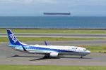 どんちんさんが、中部国際空港で撮影した全日空 737-881の航空フォト(写真)