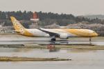 OMAさんが、成田国際空港で撮影したスクート 787-9の航空フォト(飛行機 写真・画像)
