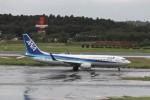 KAZFLYERさんが、成田国際空港で撮影した全日空 737-881の航空フォト(写真)
