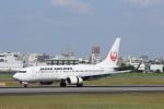 わいどあさんが、伊丹空港で撮影した日本航空 737-846の航空フォト(写真)