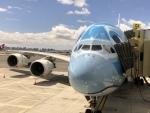 しげっとマンさんが、ダニエル・K・イノウエ国際空港で撮影した全日空 A380-841の航空フォト(写真)