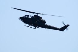 kij niigataさんが、新発田駐屯地で撮影した陸上自衛隊 AH-1Sの航空フォト(写真)