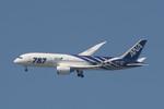 shu51さんが、福岡空港で撮影した全日空 787-8 Dreamlinerの航空フォト(写真)
