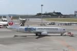 kuro2059さんが、那覇空港で撮影した日本トランスオーシャン航空 737-8Q3の航空フォト(飛行機 写真・画像)