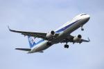 tarokun2050さんが、羽田空港で撮影した全日空 A321-211の航空フォト(写真)