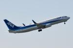 panchiさんが、成田国際空港で撮影した全日空 737-881の航空フォト(写真)