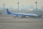 md11jbirdさんが、羽田空港で撮影した全日空 A321-211の航空フォト(写真)