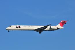 航空フォト:JA004D 日本航空 MD-90