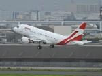 チャレンジャーさんが、羽田空港で撮影したユニバーサルエンターテインメント A318-112 CJ Eliteの航空フォト(写真)