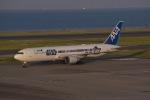 東空さんが、羽田空港で撮影した全日空 767-381/ERの航空フォト(写真)