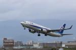 Tango Alphaさんが、伊丹空港で撮影した全日空 737-881の航空フォト(写真)