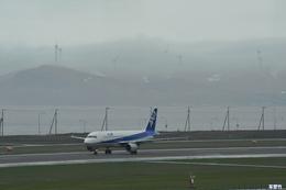 妄想竹さんが、稚内空港で撮影した全日空 A320-211の航空フォト(飛行機 写真・画像)
