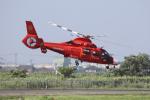 やまけんさんが、仙台空港で撮影した宮城県防災航空隊 AS365N3 Dauphin 2の航空フォト(写真)