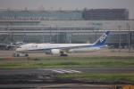 meijeanさんが、羽田空港で撮影した全日空 787-9の航空フォト(写真)