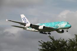 RAOUさんが、成田国際空港で撮影した全日空 A380-841の航空フォト(写真)