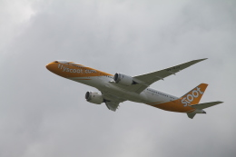 RAOUさんが、成田国際空港で撮影したスクート 787-9の航空フォト(写真)
