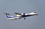 EC5Wさんが、中部国際空港で撮影したANAウイングス DHC-8-402Q Dash 8の航空フォト(写真)
