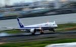HNANA787さんが、羽田空港で撮影した全日空 787-8 Dreamlinerの航空フォト(飛行機 写真・画像)