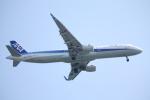 フレッシュマリオさんが、羽田空港で撮影した全日空 A321-211の航空フォト(写真)