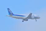 ポン太さんが、成田国際空港で撮影した全日空 A320-214の航空フォト(写真)