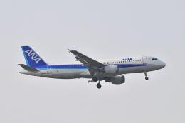 ポン太さんが、成田国際空港で撮影した全日空 A320-214の航空フォト(飛行機 写真・画像)