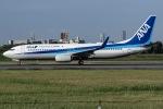 I.K.さんが、伊丹空港で撮影した全日空 737-881の航空フォト(写真)