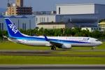 CB20さんが、伊丹空港で撮影した全日空 737-881の航空フォト(写真)