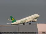 さんぜんさんが、羽田空港で撮影した春秋航空 A320-214の航空フォト(写真)