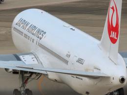 さんぜんさんが、羽田空港で撮影した日本航空 767-346/ERの航空フォト(写真)