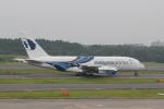 keitsamさんが、成田国際空港で撮影したマレーシア航空 A380-841の航空フォト(飛行機 写真・画像)