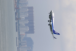 NH642さんが、香港国際空港で撮影した全日空 737-781の航空フォト(飛行機 写真・画像)