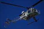 へりさんが、東京ヘリポートで撮影したアカギヘリコプター SA315B Lamaの航空フォト(写真)