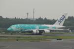 keitsamさんが、成田国際空港で撮影した全日空 A380-841の航空フォト(飛行機 写真・画像)
