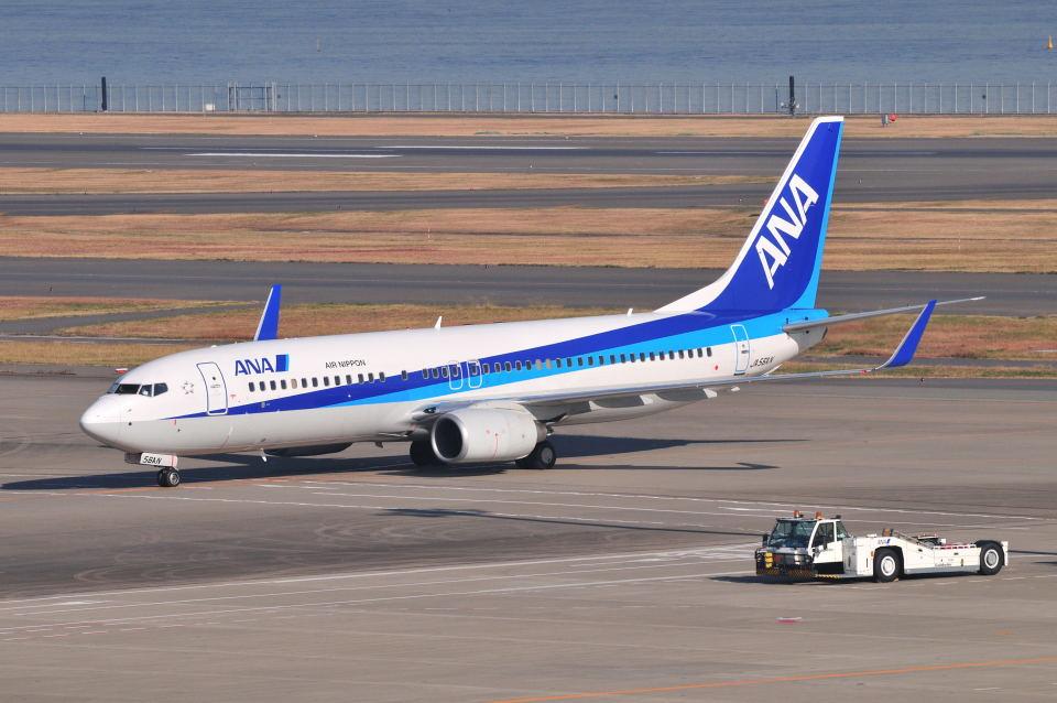 ポン太さんの全日空 Boeing 737-800 (JA56AN) 航空フォト