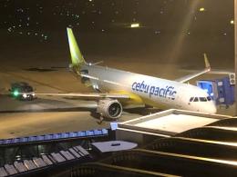 コマキサン(マキちゃん)さんが、中部国際空港で撮影したセブパシフィック航空 A321-271NXの航空フォト(飛行機 写真・画像)