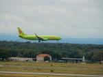 kiyohsさんが、フランクフルト国際空港で撮影したS7航空 737-86Jの航空フォト(写真)