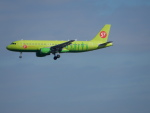 kiyohsさんが、成田国際空港で撮影したS7航空 A320-214の航空フォト(写真)
